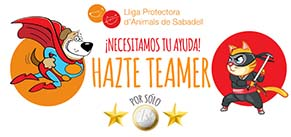 https://www.teaming.net/lligaprotectorad-animalsdesabadell