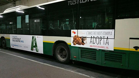 Publicidad en dos autobuses de la TUS