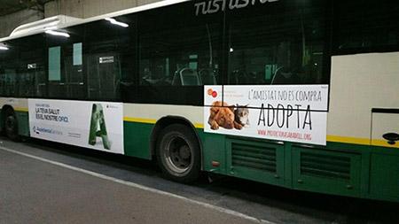 Publicitat en dos autobuses de la TUS