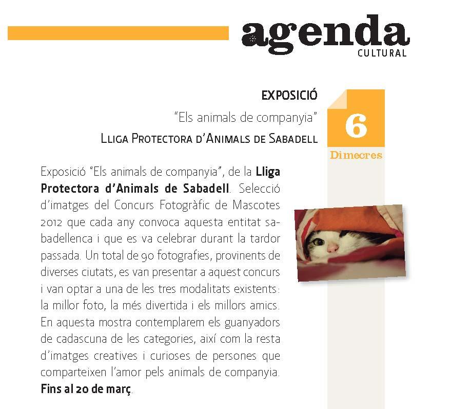Agenda C.I.