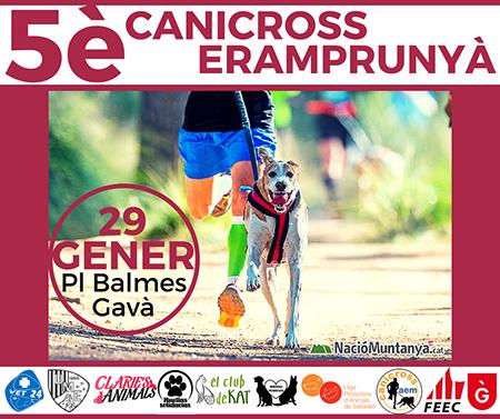 Canicross Gava