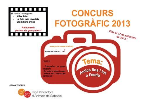 Concurs fotos 2013