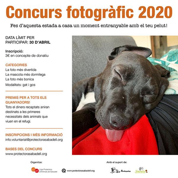 Concurso fotos 2020