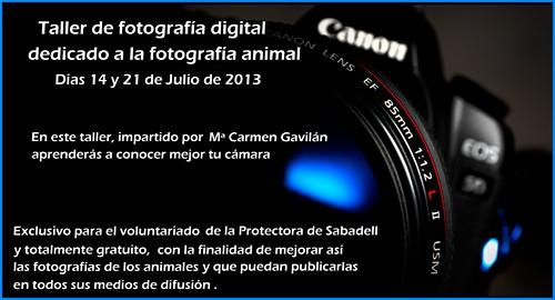 taller fotografico