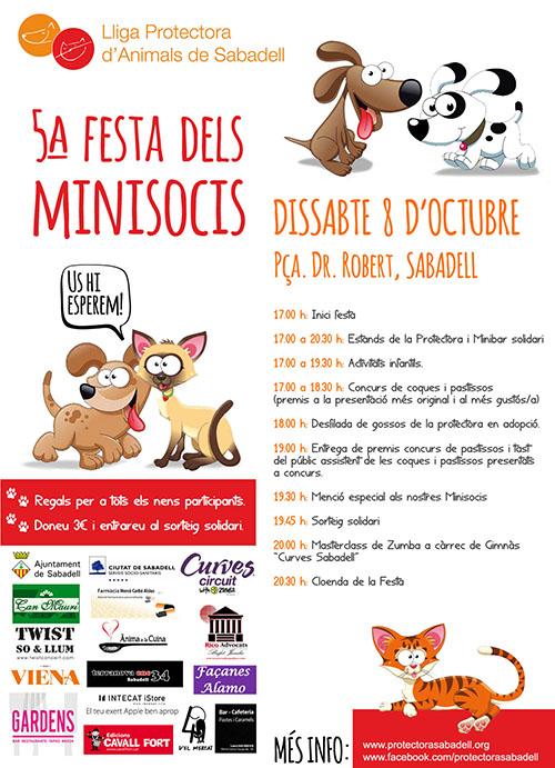 Cartel festa 5 minisocis