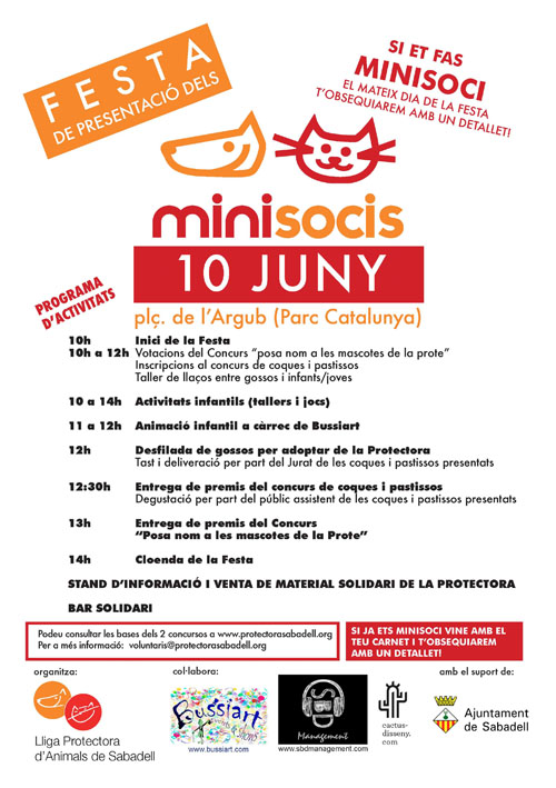 Cartel Festa Minisocis