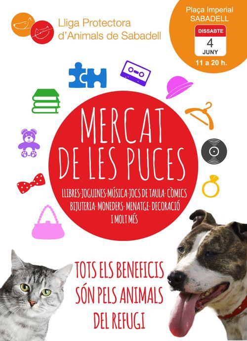 Mercat 4-6-16
