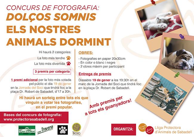 Concurso fotos 2018