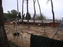 patio reparado 2